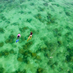 crystal clear waters that surround the island as you snorkel